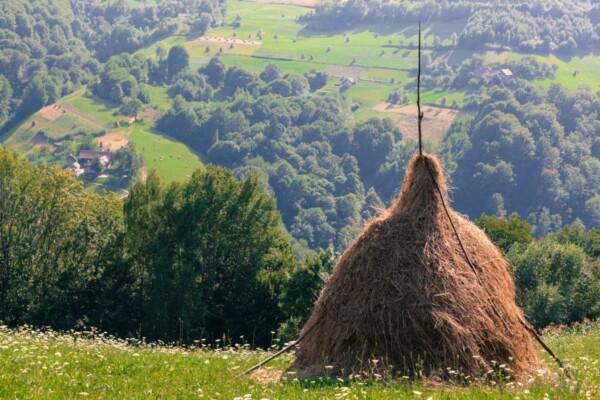 Persani Mountains, Carpathians